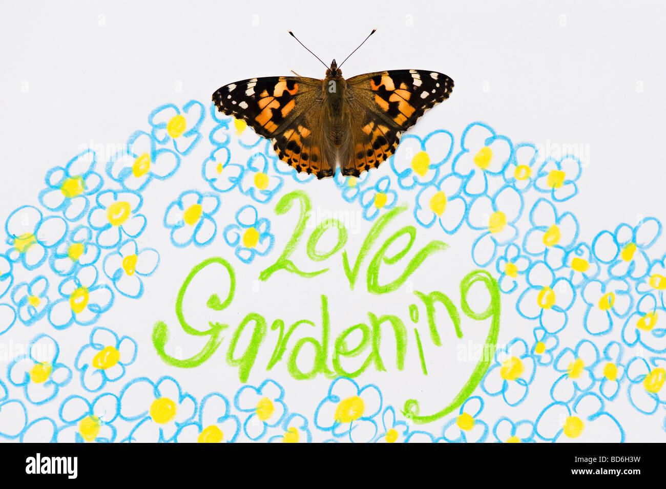 Distelfalter Schmetterling Auf Liebe Gartenarbeit Und Blumen