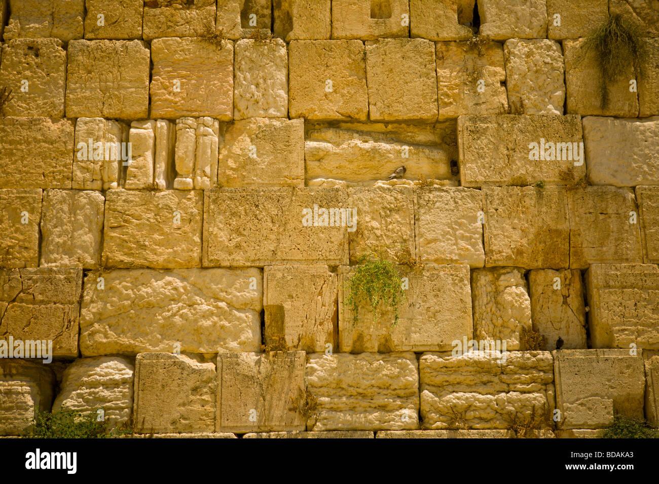 Nahaufnahme Detail von der Klagemauer in Jeruslaem Stockbild