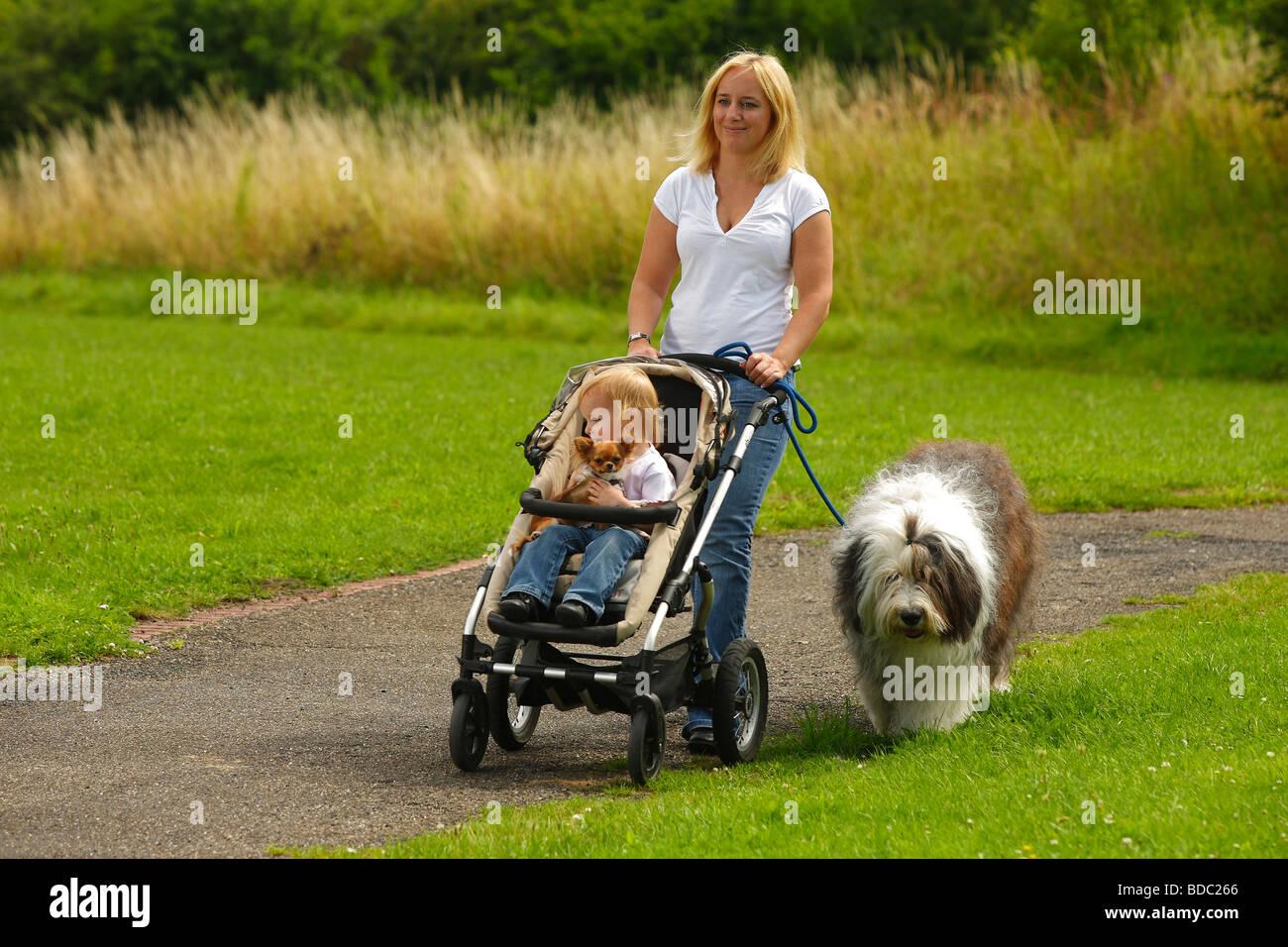 Hunde in Not Pfarrkirchen e. V. - Posts | Facebook
