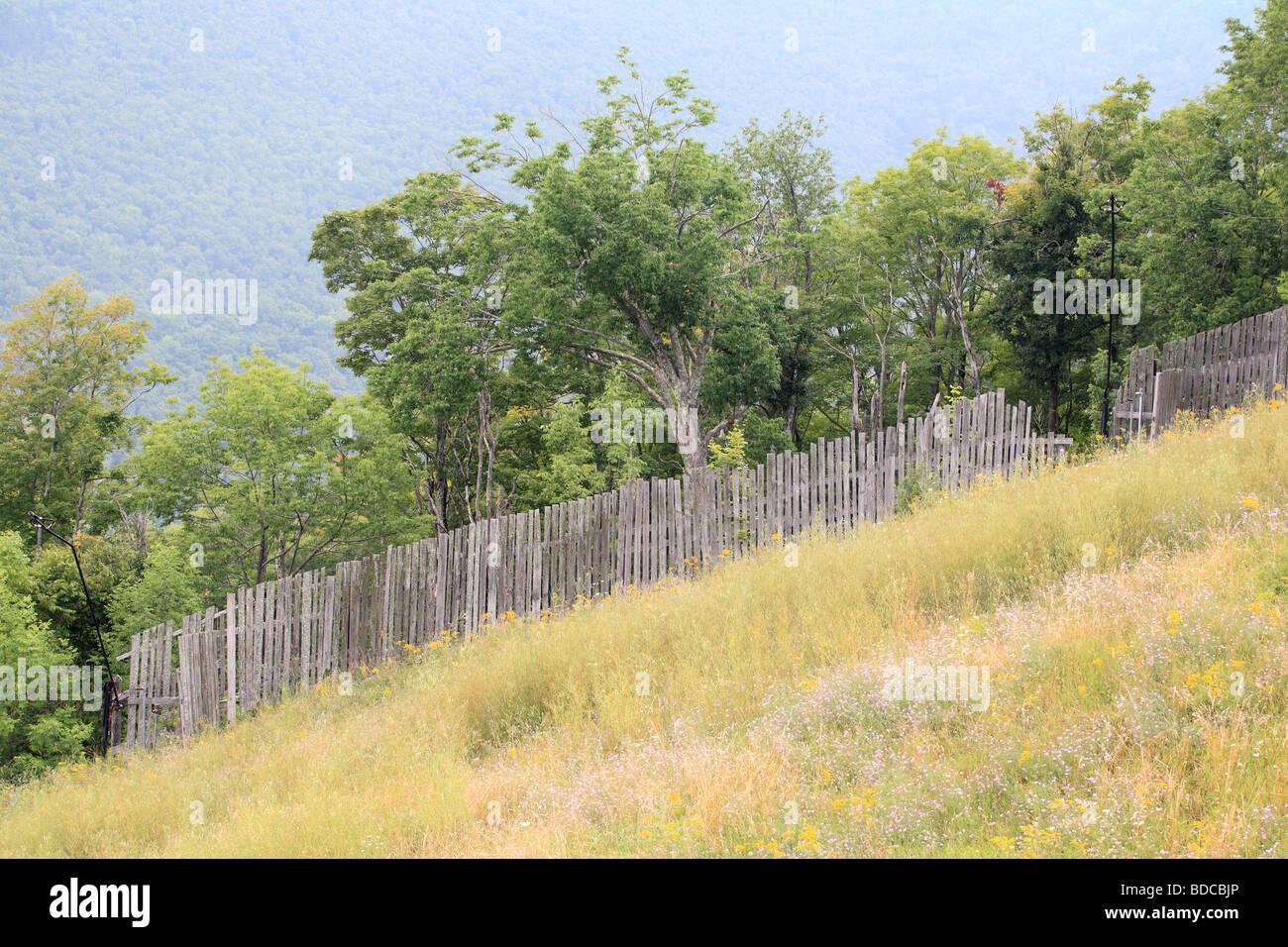 Berg-Feld und Zaun mit Wald im Hintergrund Stockbild