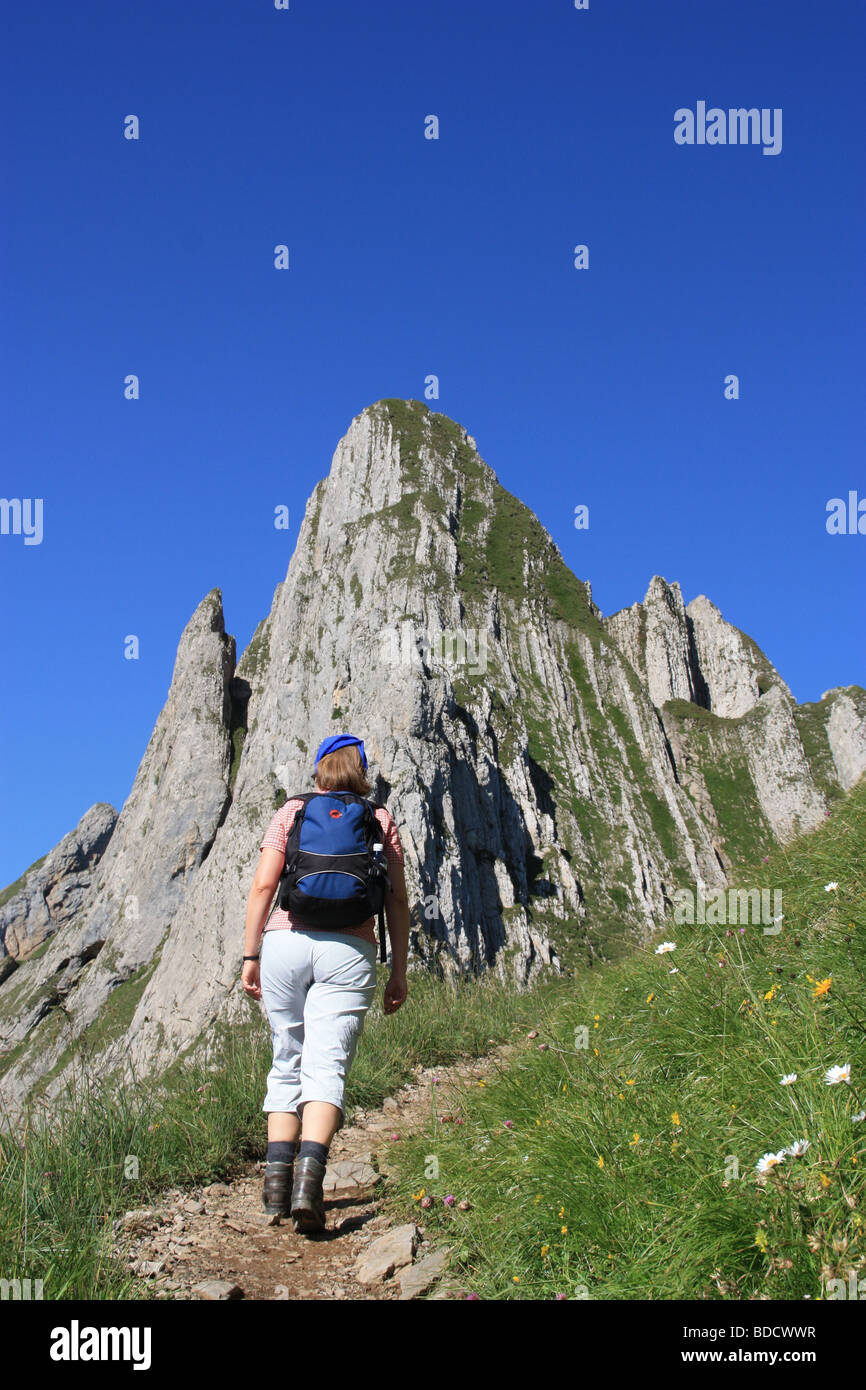 wandern in den schweizer alpen stockfoto bild 25484643 alamy. Black Bedroom Furniture Sets. Home Design Ideas
