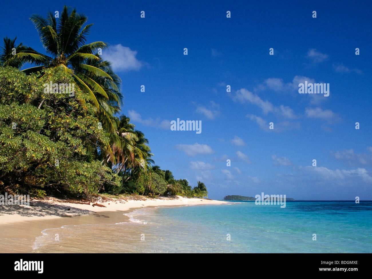 marshallinseln mikronesien strand und palmen b ume auf calalin insel ein picknick auf. Black Bedroom Furniture Sets. Home Design Ideas