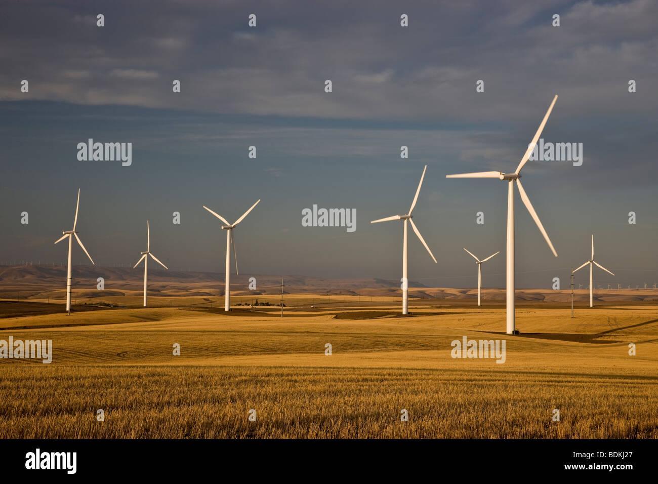 """Windturbinen """"Windpark"""" Betrieb im Weizenfeld geerntet. Stockbild"""