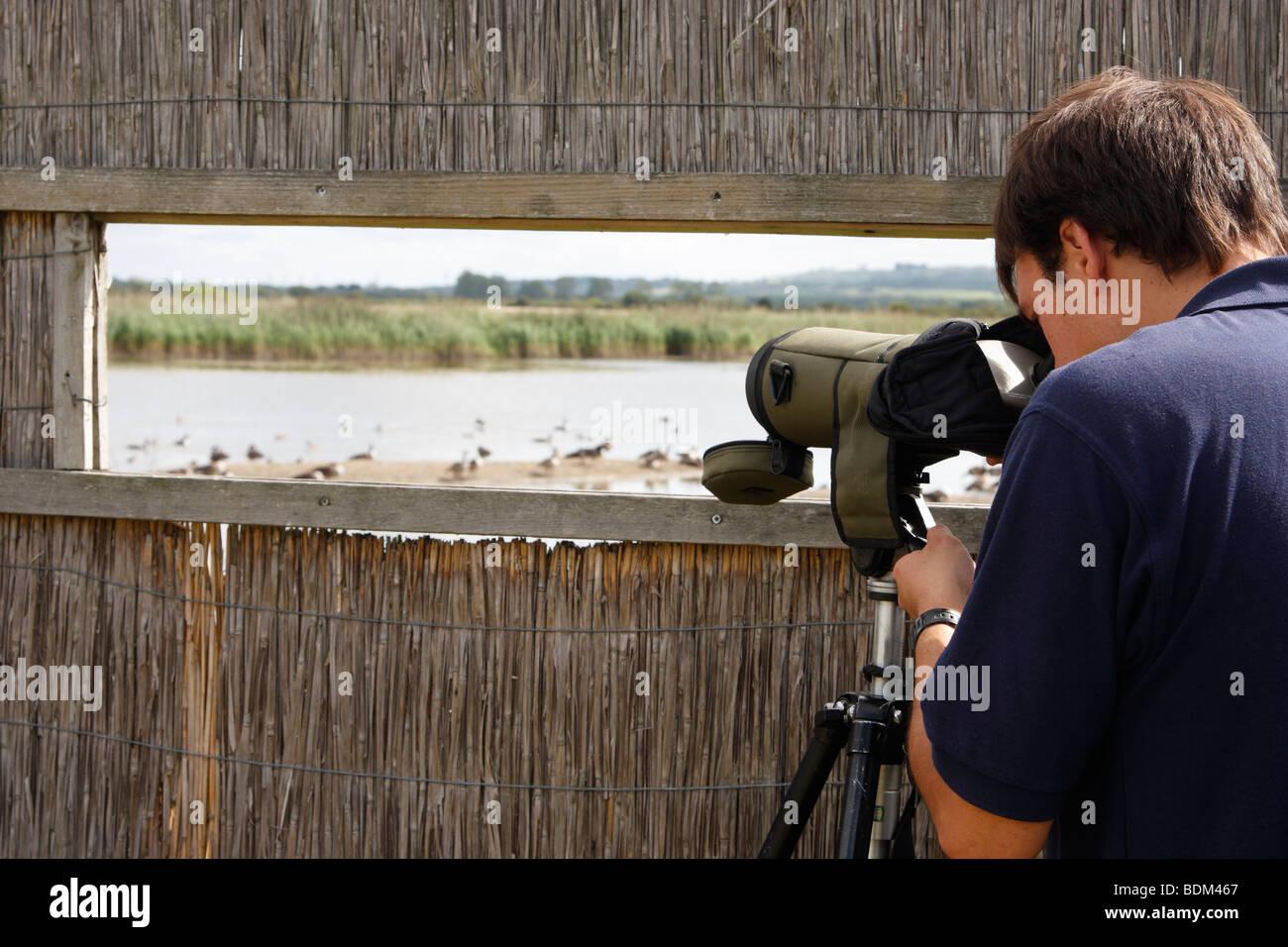 """RSPB-Chefin, die Vögel zu beobachten, durch Teleskop aus """"Bird Hide"""", Otmoor Nature Reserve, Oxfordshire, Stockbild"""