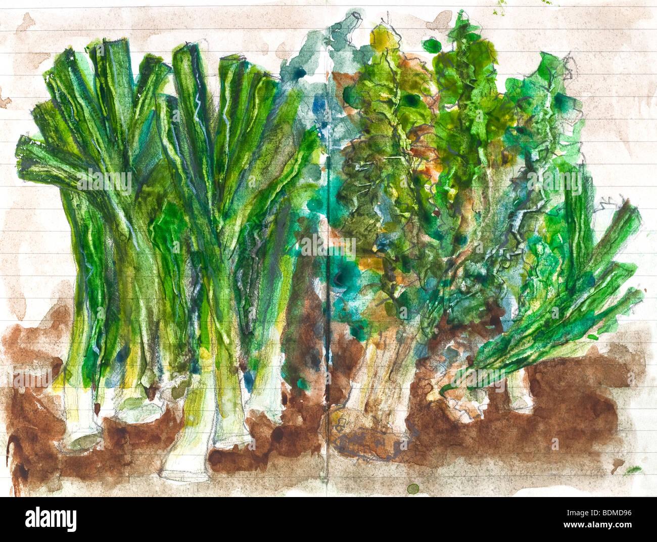 Malerei in Aquarell Skizzenbuch von Gemüse - Frankreich Stockfoto ...