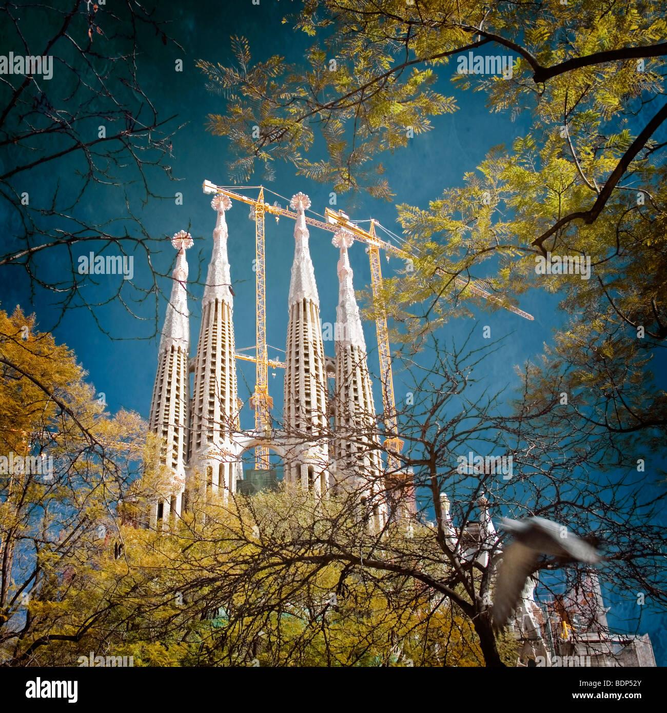 Sagrada Familia barcelona Stockbild