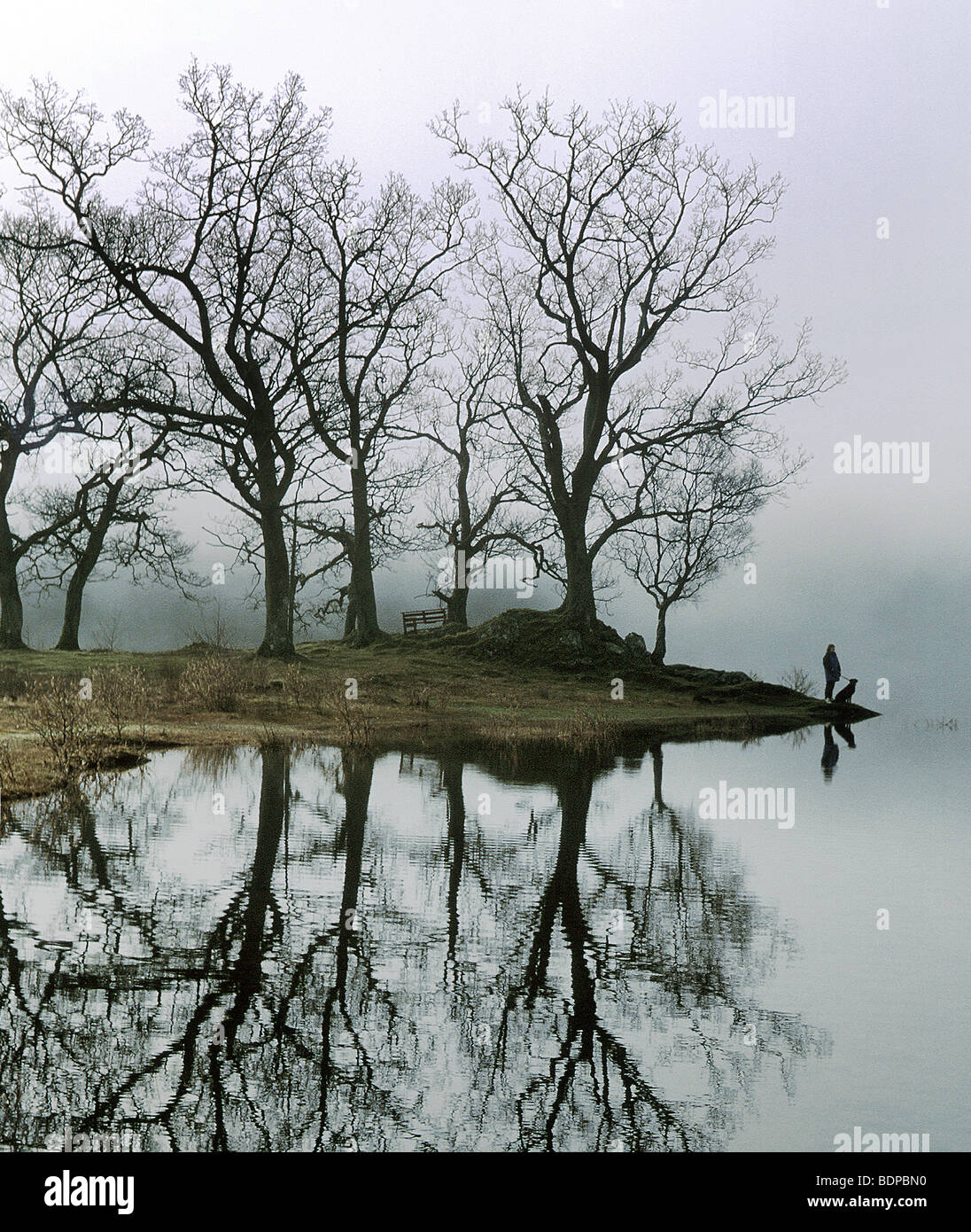 Eine Figur mit einem Hund an einem See mit Bäumen Stockbild