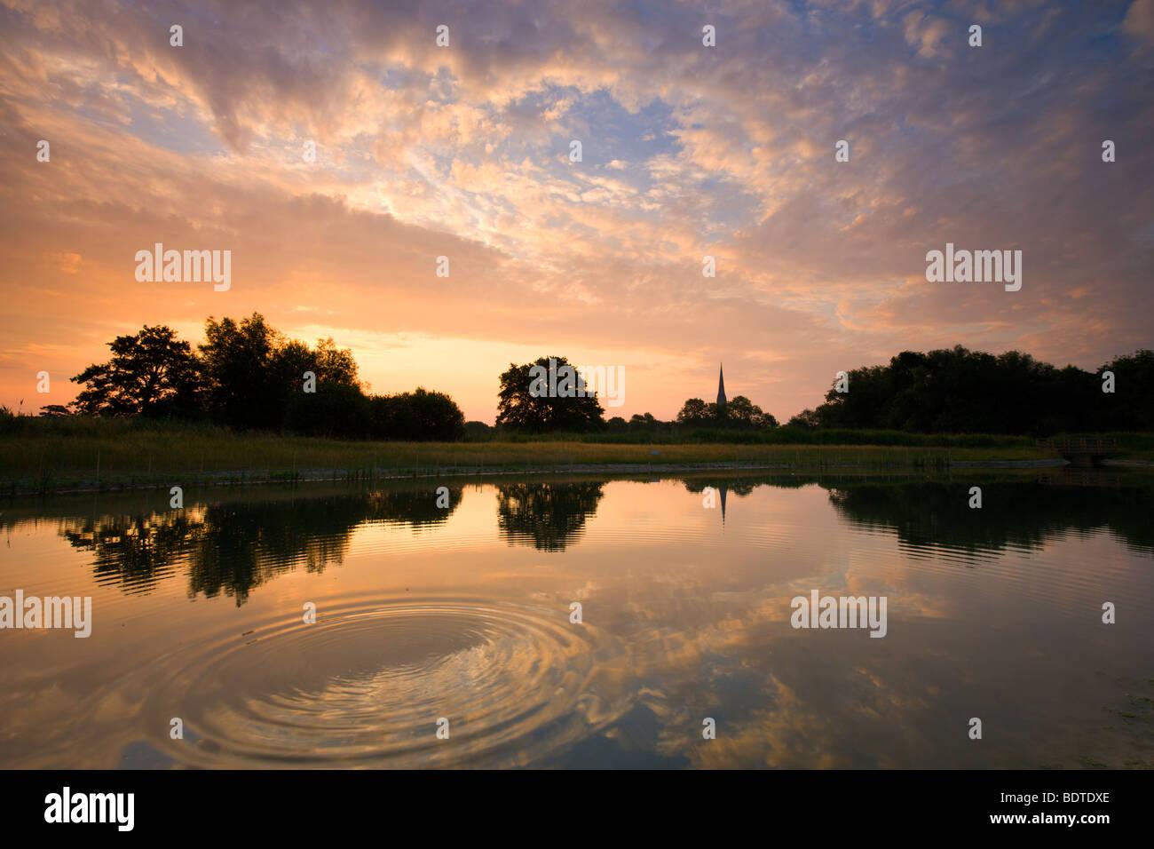 Kathedrale von Salisbury spiegelt sich in einem Teich im Morgengrauen, Salisbury, Wiltshire, England. Sommer (Juni) Stockbild