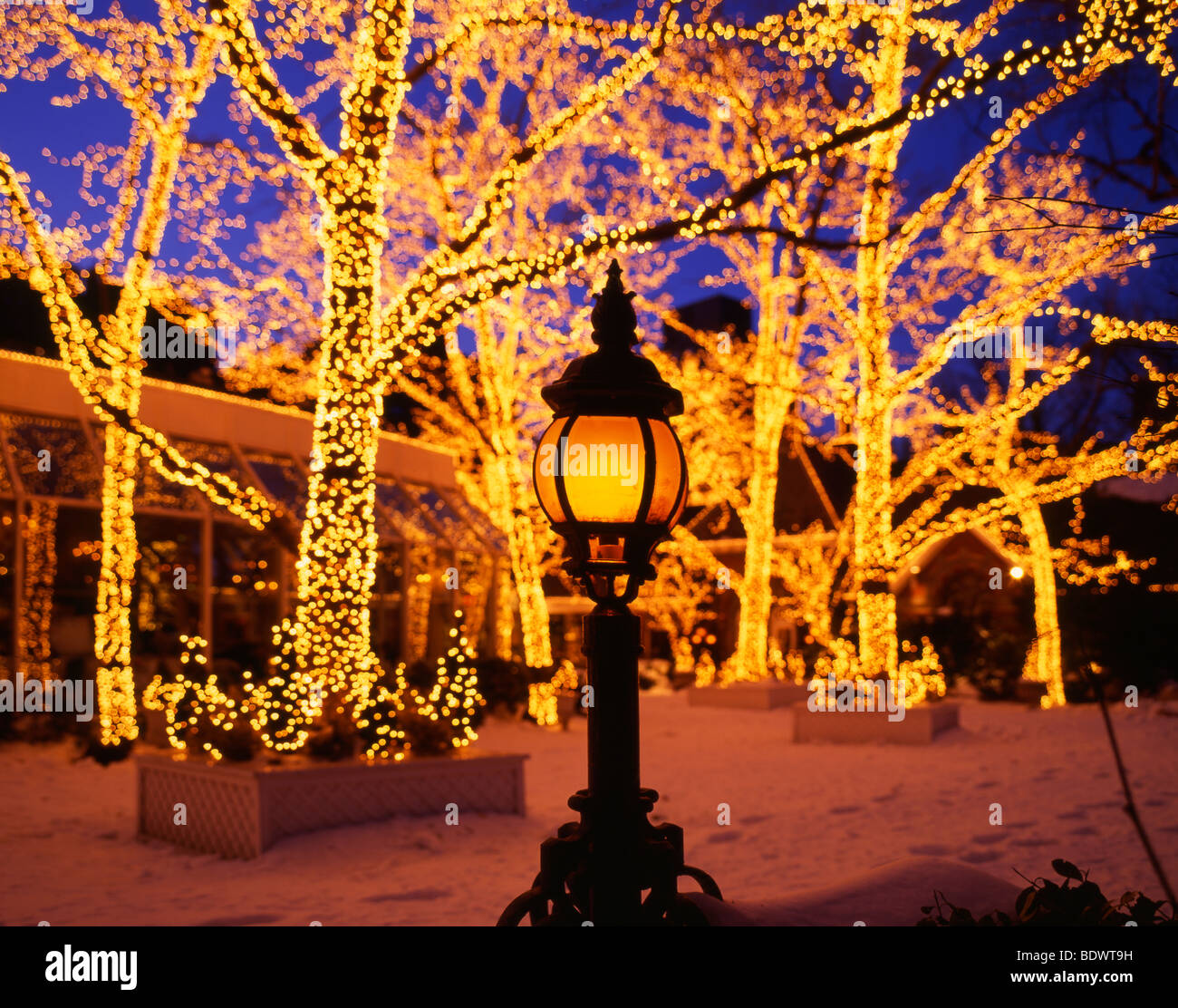 Weihnachten, Central Park, New York City, USA Stockfoto, Bild ...