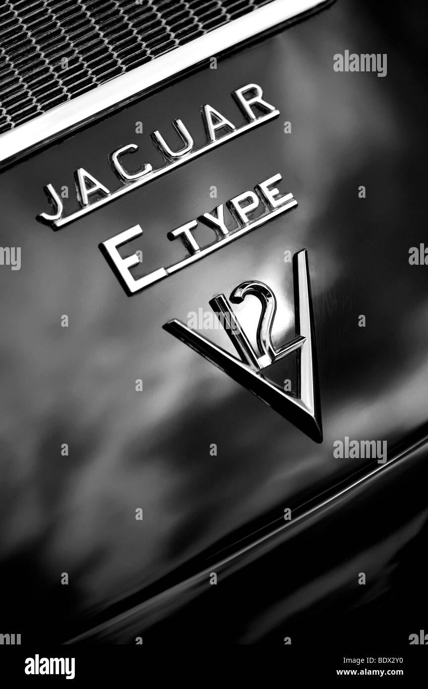 E Type V12 Jaguar, klassischen britischen Sportwagen Stockbild