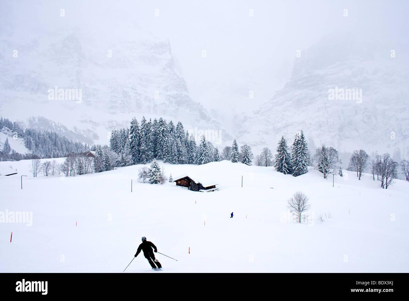Skifahren im Schneesturm in Grindelwald, Schweiz. Stockbild