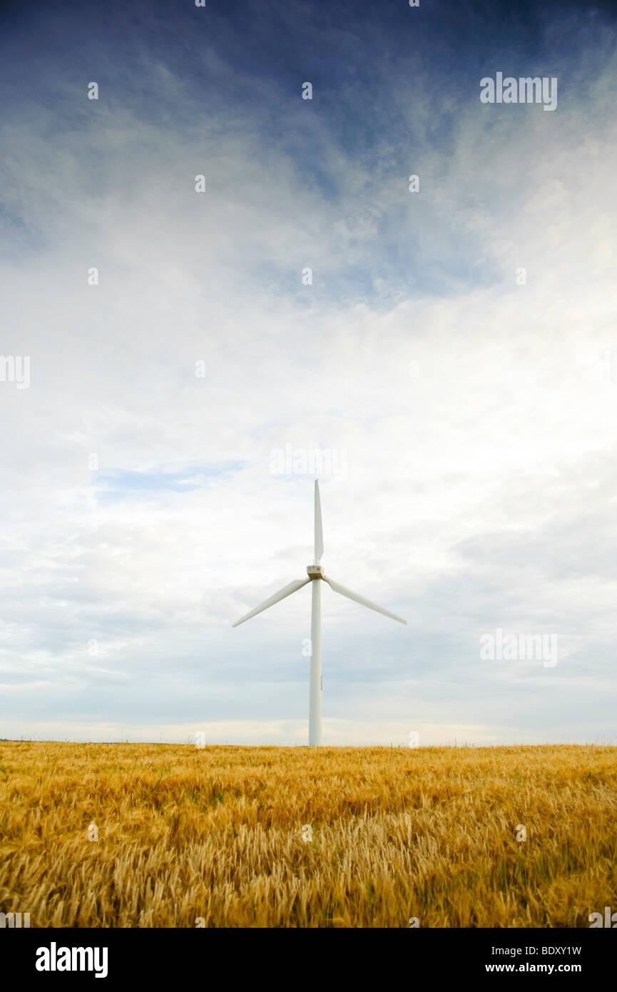 Windpark Windkraft, Anglesey North Wales, UK Stockbild