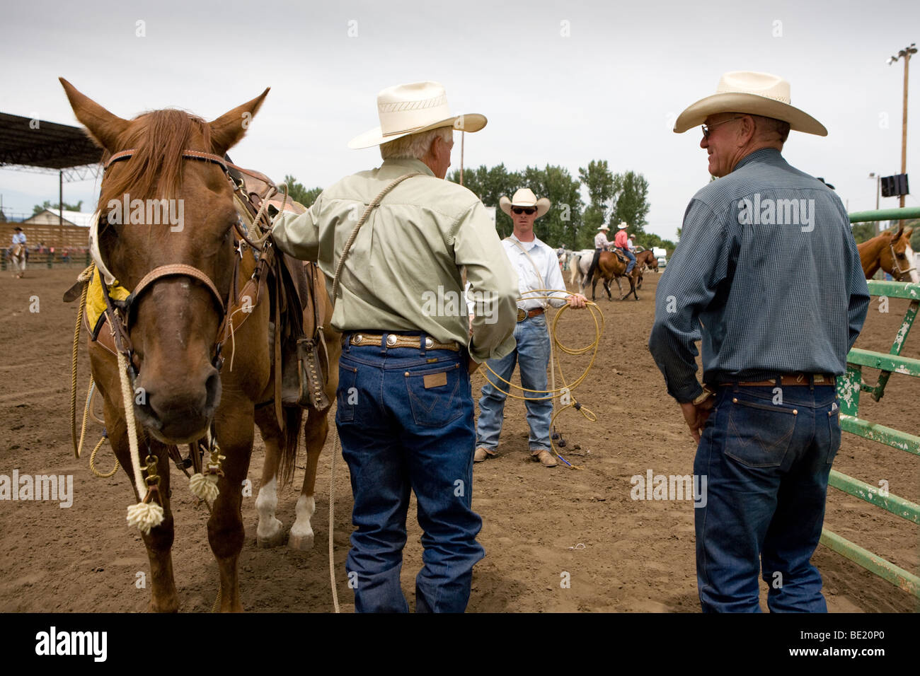 The Cowboys Stockfotos & The Cowboys Bilder - Alamy