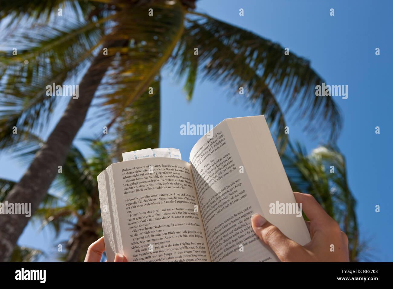 Frau am Strand ein Buch unter Palmen Stockbild