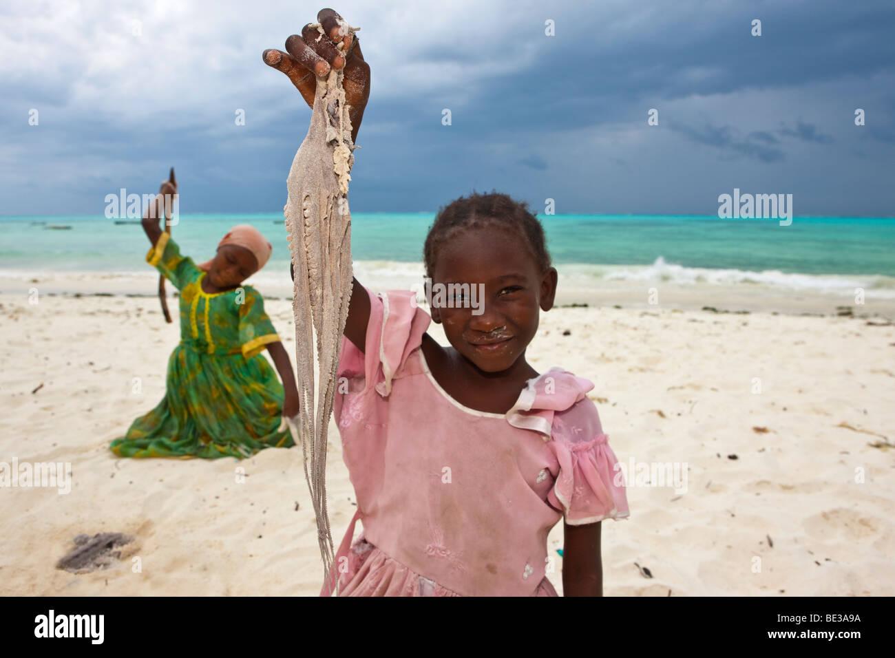 Kinder schlagen eine Krake mit Stöcken um machen, essbar, Jambiani, Sansibar, Tansania, Afrika Stockfoto