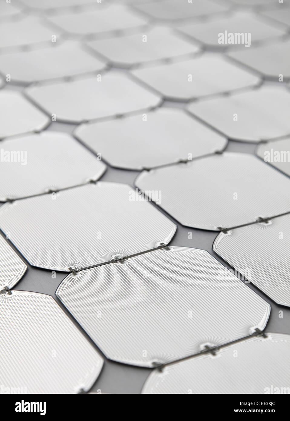Solon SE: Produktion von Sonnenkollektoren. Elektrische Schaltungen auf Solarzellen, BERLIN, Deutschland Stockbild