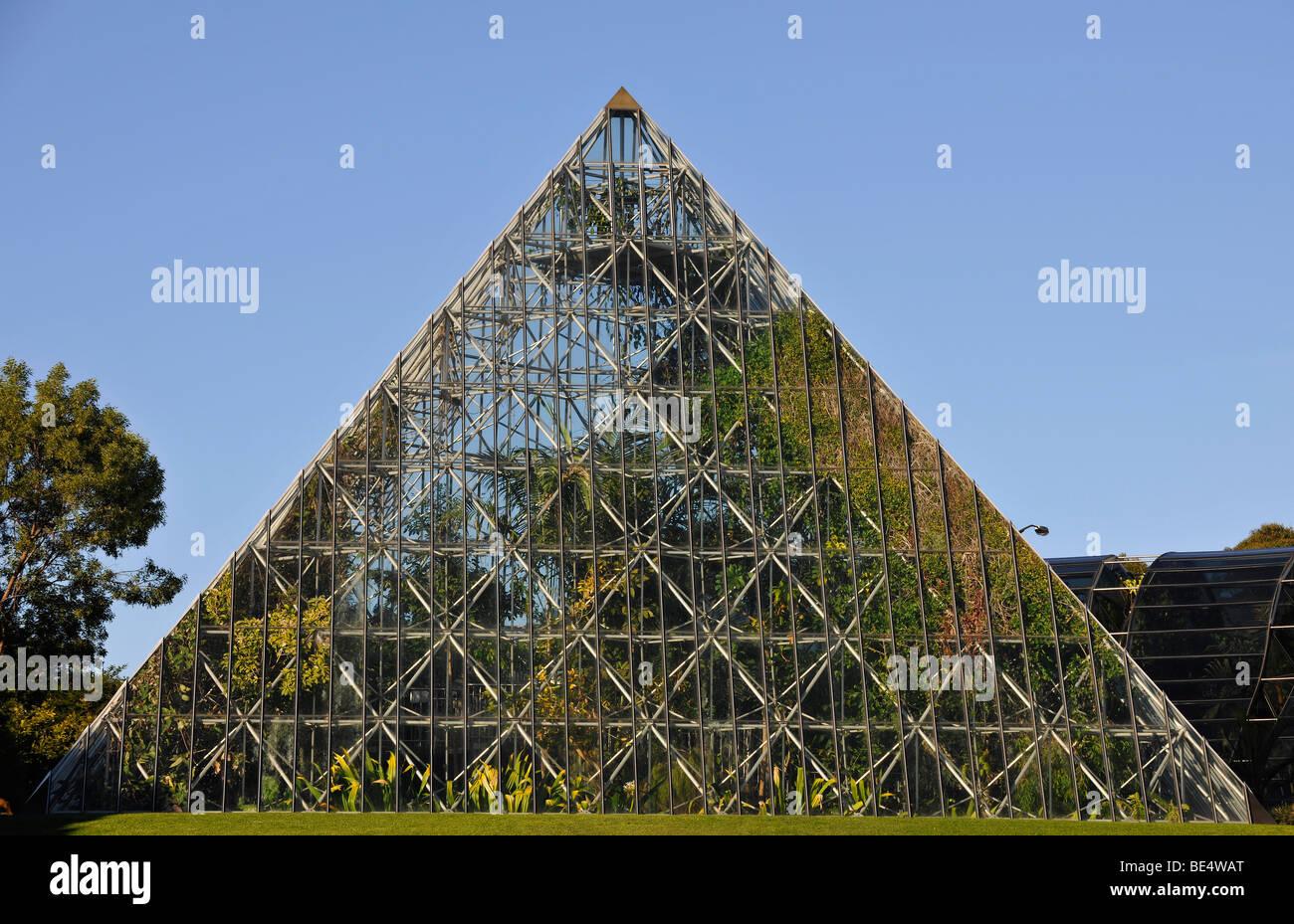 Tropenhaus, Royal Botanical Gardens, Domain, Sydney, New South Wales, Australien Stockbild