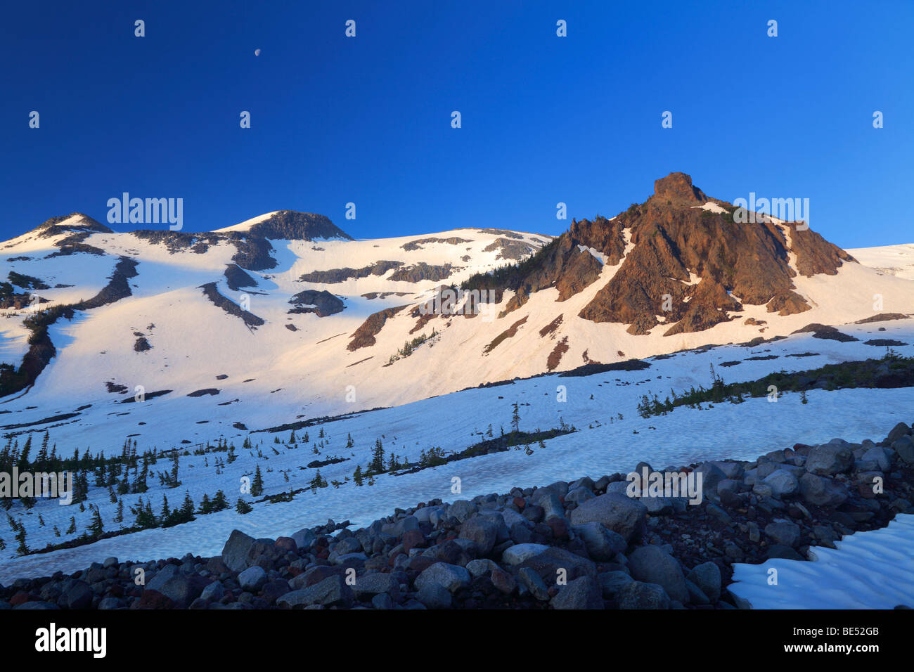 Mount Rainier Nationalpark Wildnis nahe Panhandle Passhöhe am Wegesrand im Winter Wonderland Stockbild