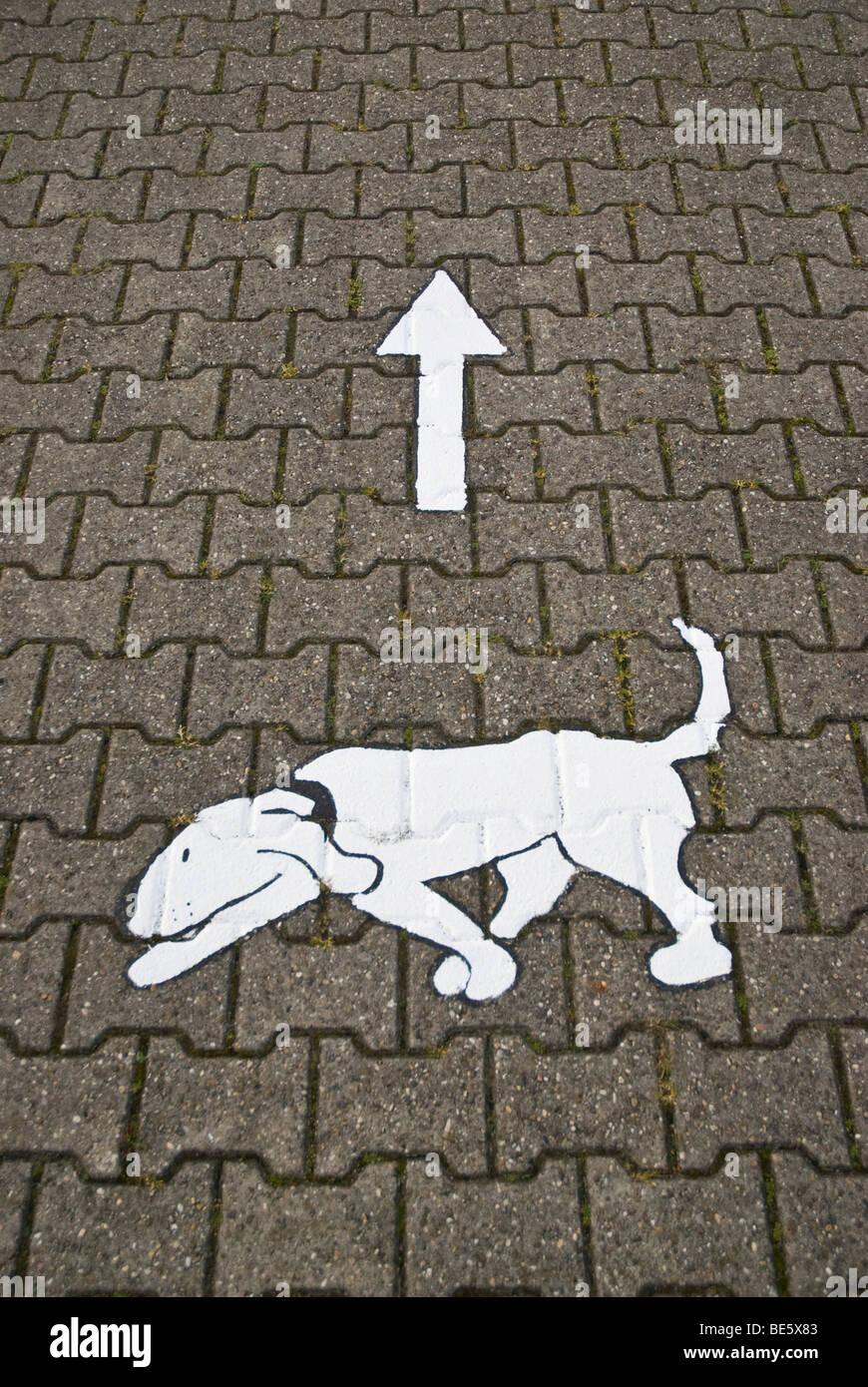 Hund Weg, Bild von einem Hund mit einem Pfeil auf dem Bürgersteig Stockbild