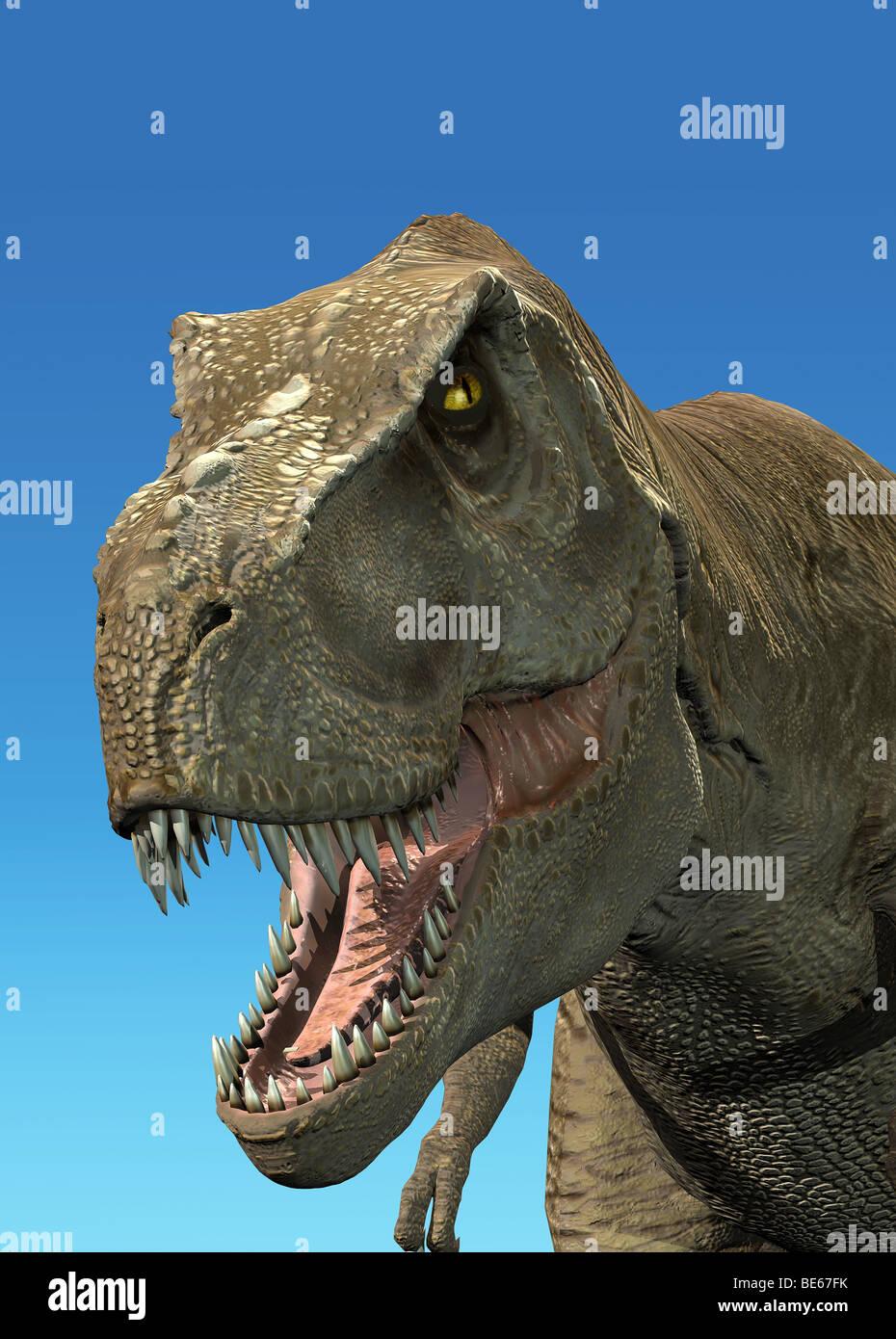 Tyrannosaurus Rex schließen sich digitale fotorealistische Rendering, T-Rex Stockbild