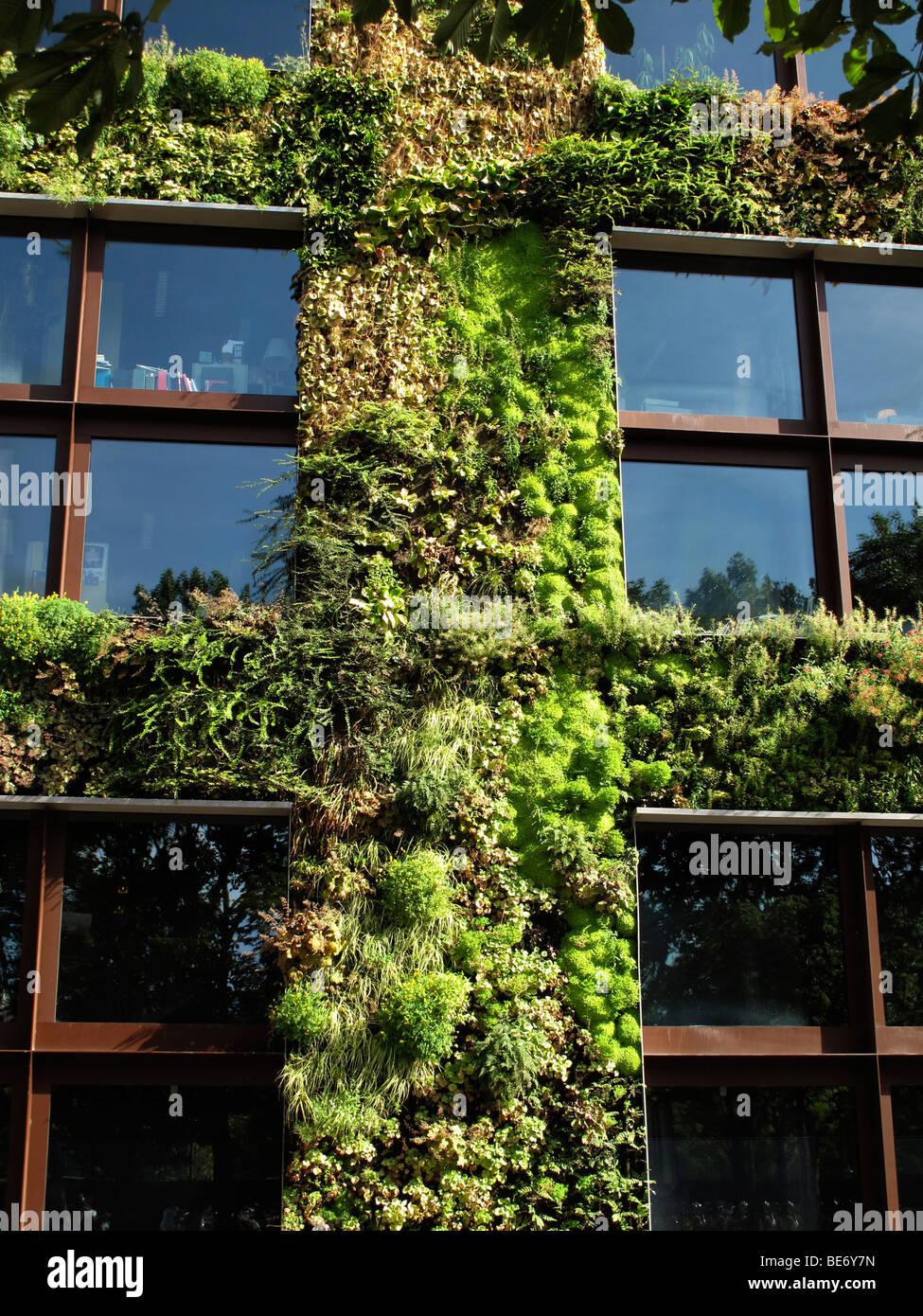 Vertical Garden Stockfotos & Vertical Garden Bilder - Alamy