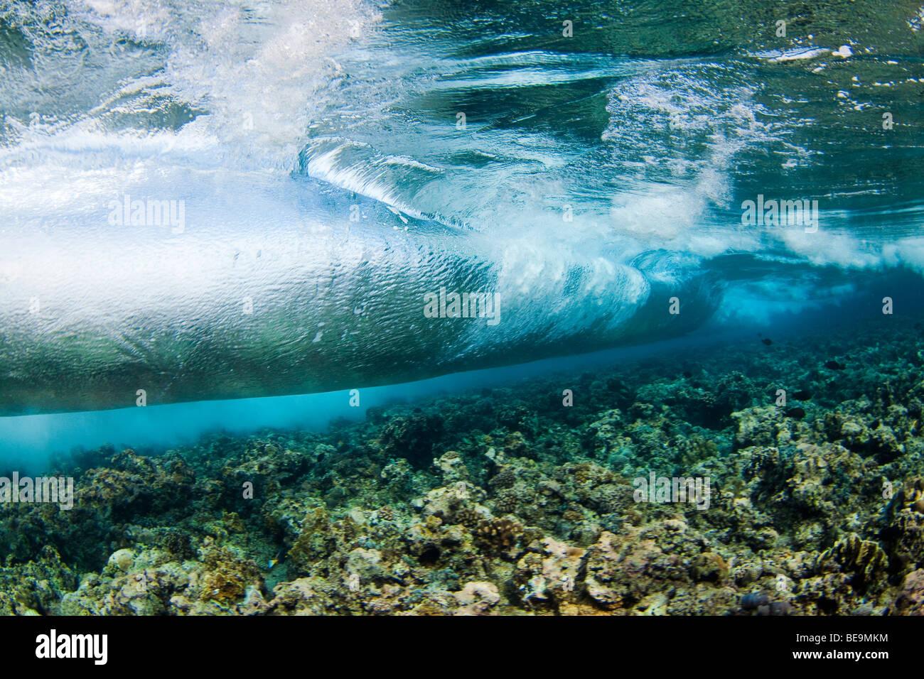 Surf stürzt auf dem Riff in Nationalpark Tubbataha, Philippinen. Stockbild