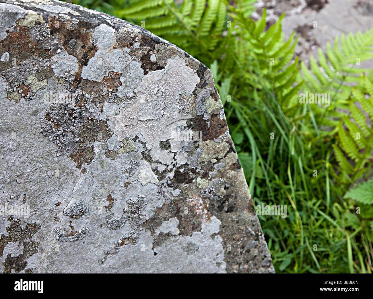 Verwitterter Grabstein und Schuppen mit verlorene Inschrift in Wales UK Flechten bedeckt Stockbild