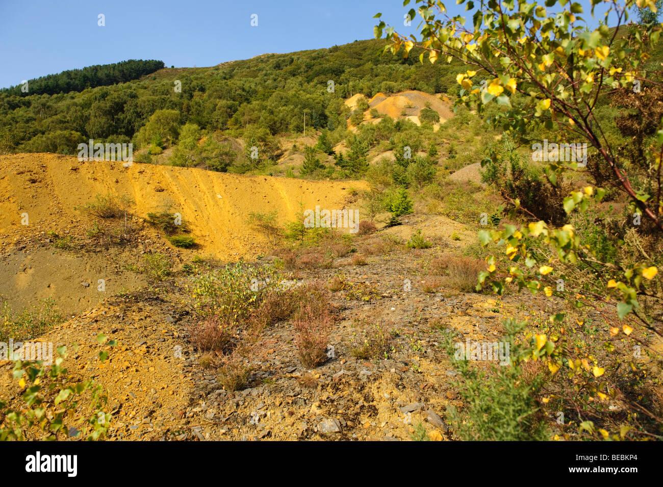 Gelbe ocker farbigen Giftmüll verderben aus alten Zink Bleiminen zurückgefordert wird langsam durch Pflanzen Stockbild