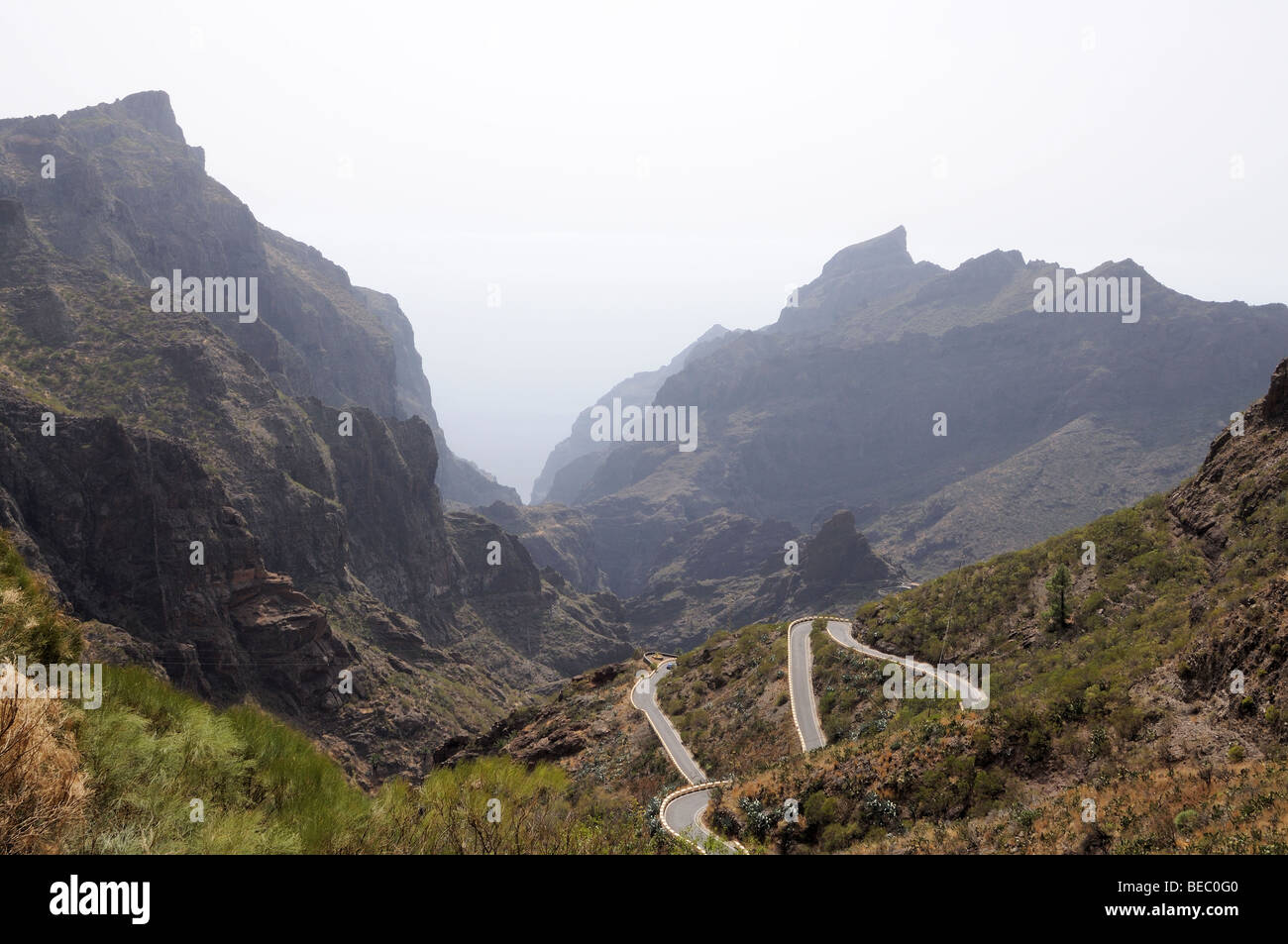 Teno-Gebirge auf der Kanarischen Insel Teneriffa, Spanien Stockbild