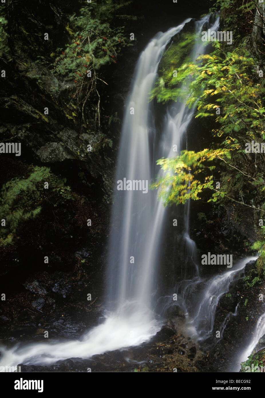 fahler wasserfall herbst schwarzwald baden w rttemberg deutschland europa stockfoto bild. Black Bedroom Furniture Sets. Home Design Ideas