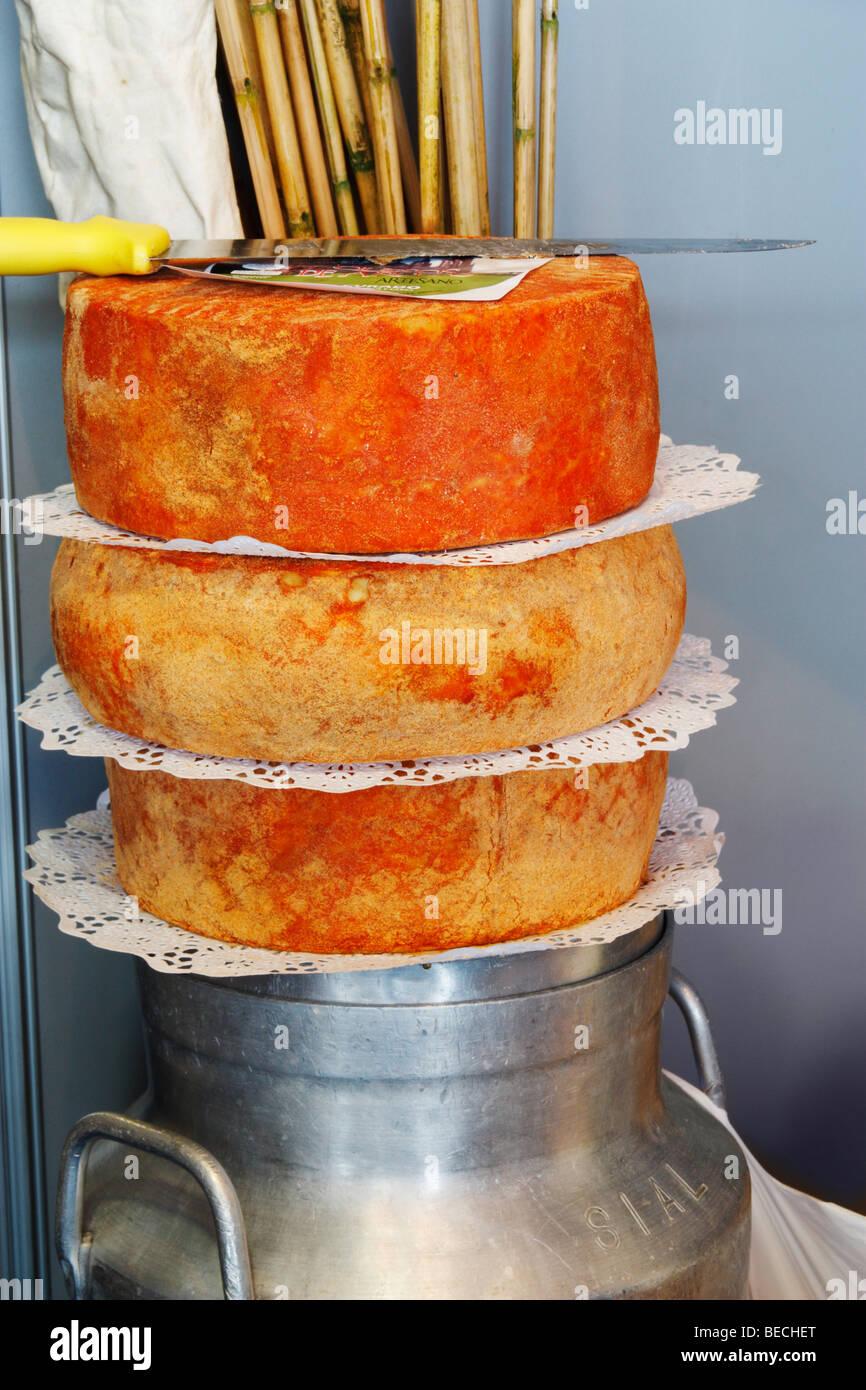 Käse auf Milchkanne in Arucas auf Gran Canaria auf den Kanarischen Inseln Stockbild