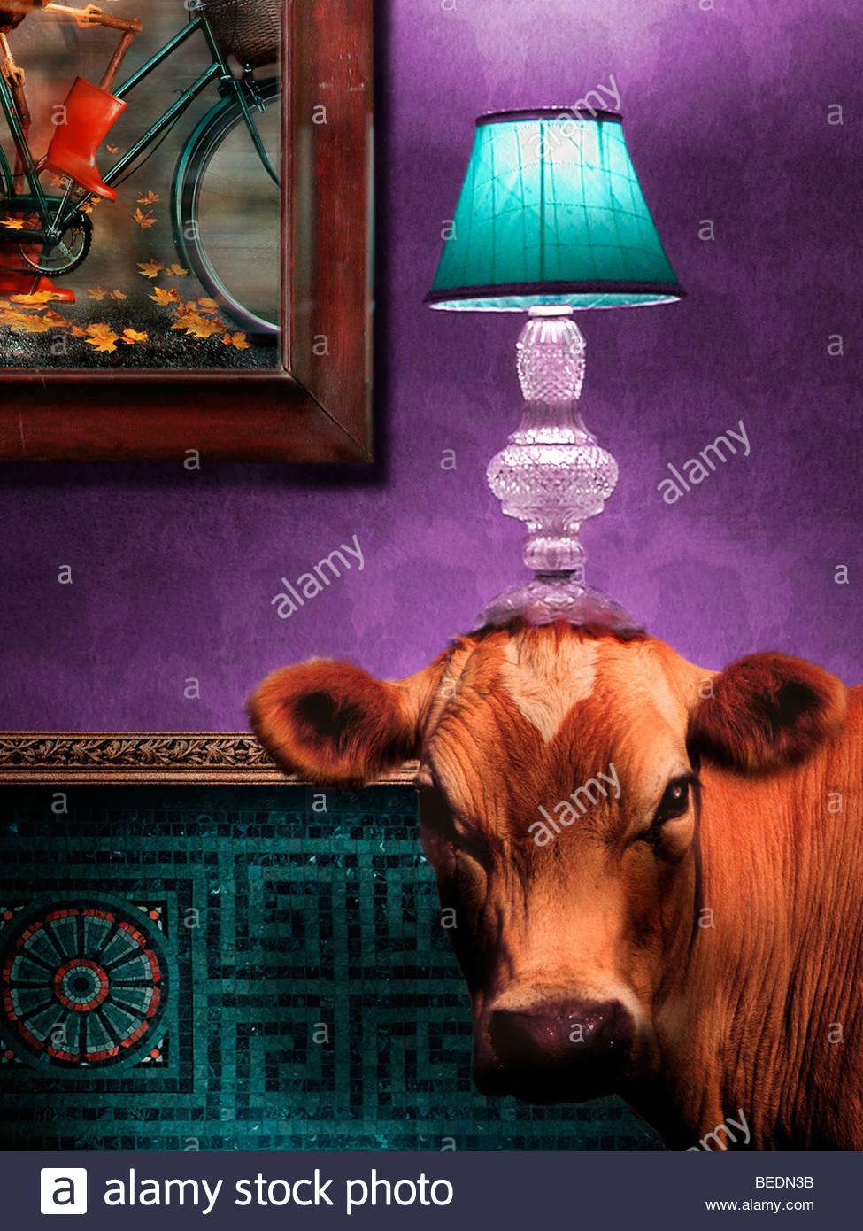 Kuh im Wohnzimmer mit Lampe auf Kopf Stockbild