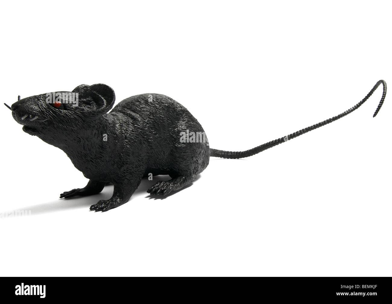 Charmant Cartoon Ratte Essen Draht Galerie - Der Schaltplan - greigo.com