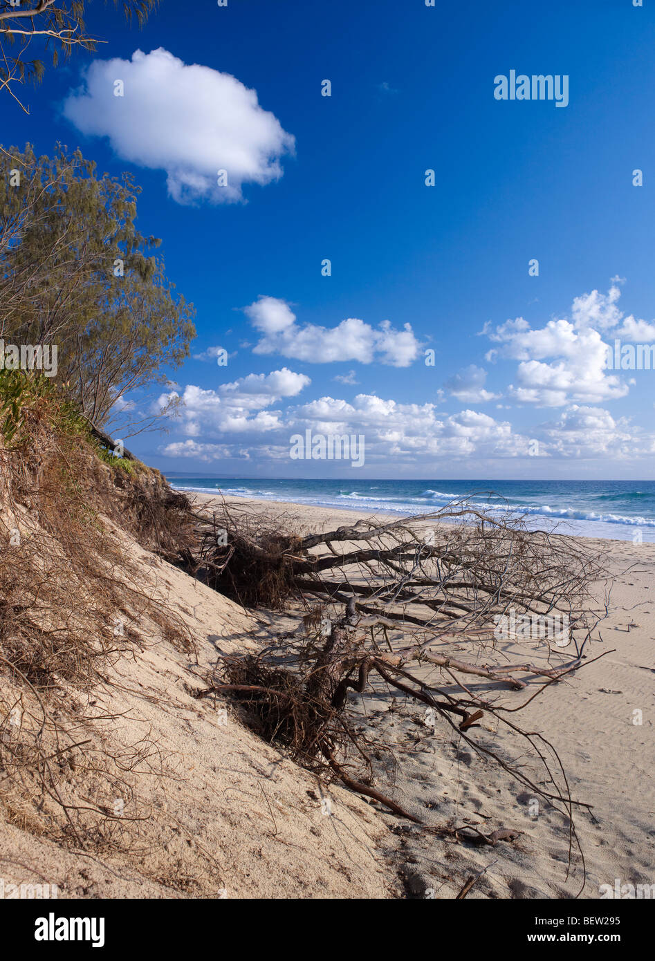 Strand-Erosion auf Rainbow Beach Queensland Australien vom Anstieg des Meeresspiegels Stockbild