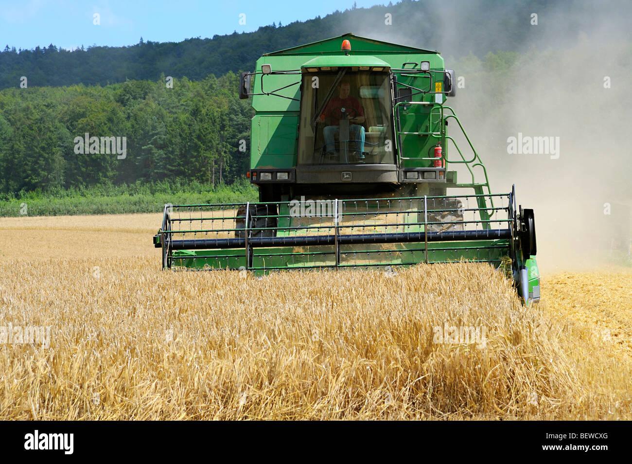 Mähdrescher im Mais Feld, Spessart, Bayern, Deutschland, Vorderansicht Stockfoto