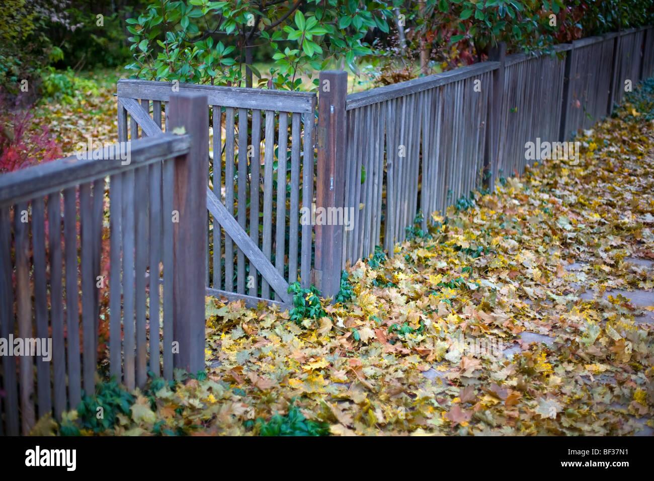 Gate With Autumn Foliage Stockfotos & Gate With Autumn Foliage
