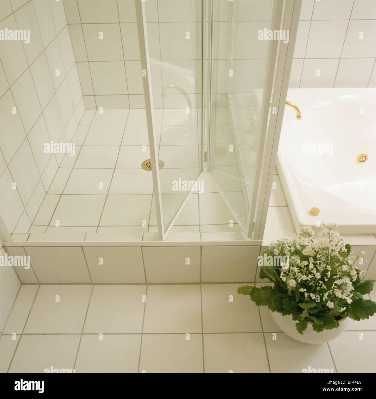 Geflieste Dusche nahaufnahme der weiß blühende zimmerpflanze neben glas falttüren auf