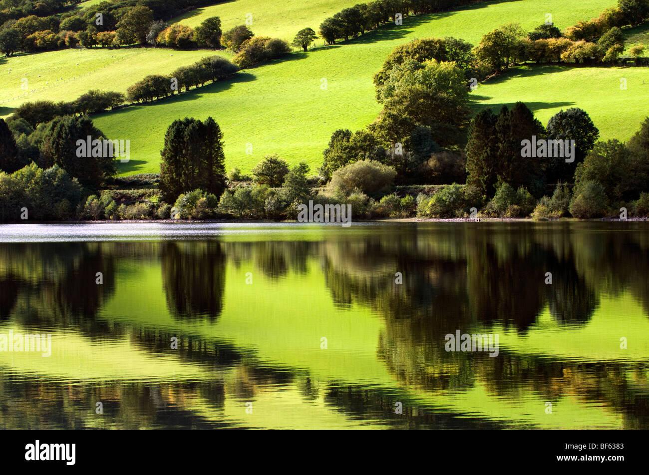 Perfekte Spiegelung der grünen Felder an Wanderungen Reservoir, Brecon Beacons in Wales am schönen sonnigen Stockbild