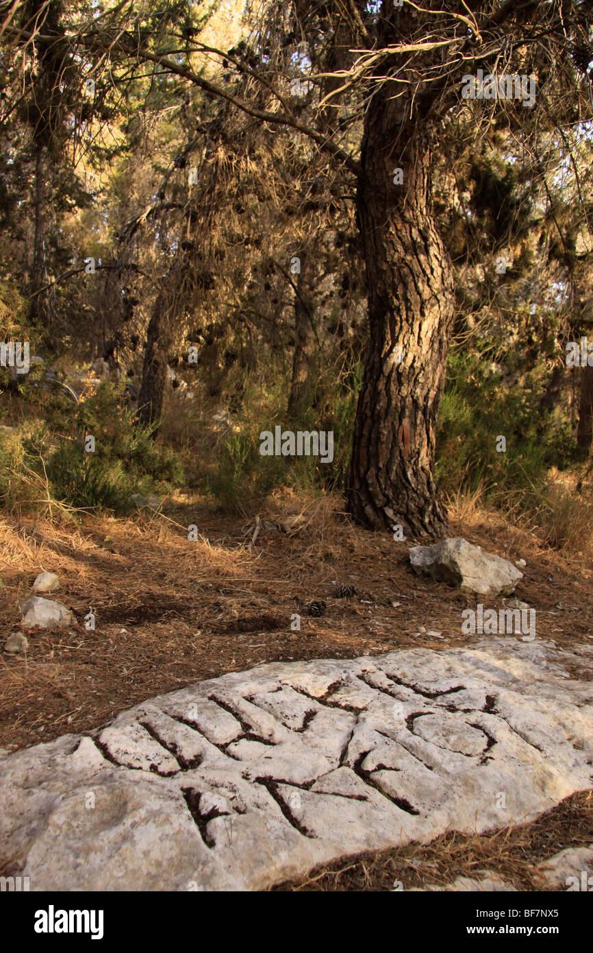"""""""Gezer Grenzsteine"""" mit Inschriften in Hebräisch und Griechisch aus dem ersten Jahrhundert Stockbild"""