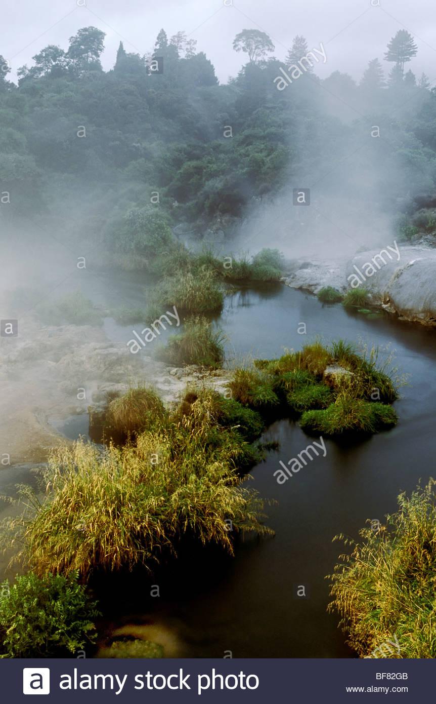 Geothermische Gebiet, Rotorua, Neuseeland Stockfoto