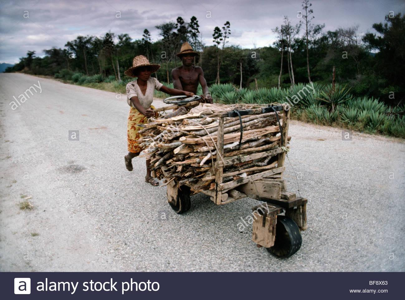Menschen drängen Brennholz zurück ins Dorf, Madagaskar Stockfoto
