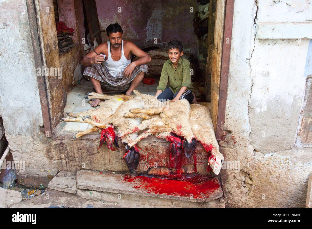 Fleischer in Ajmer in Rajasthan Indien Stockbild