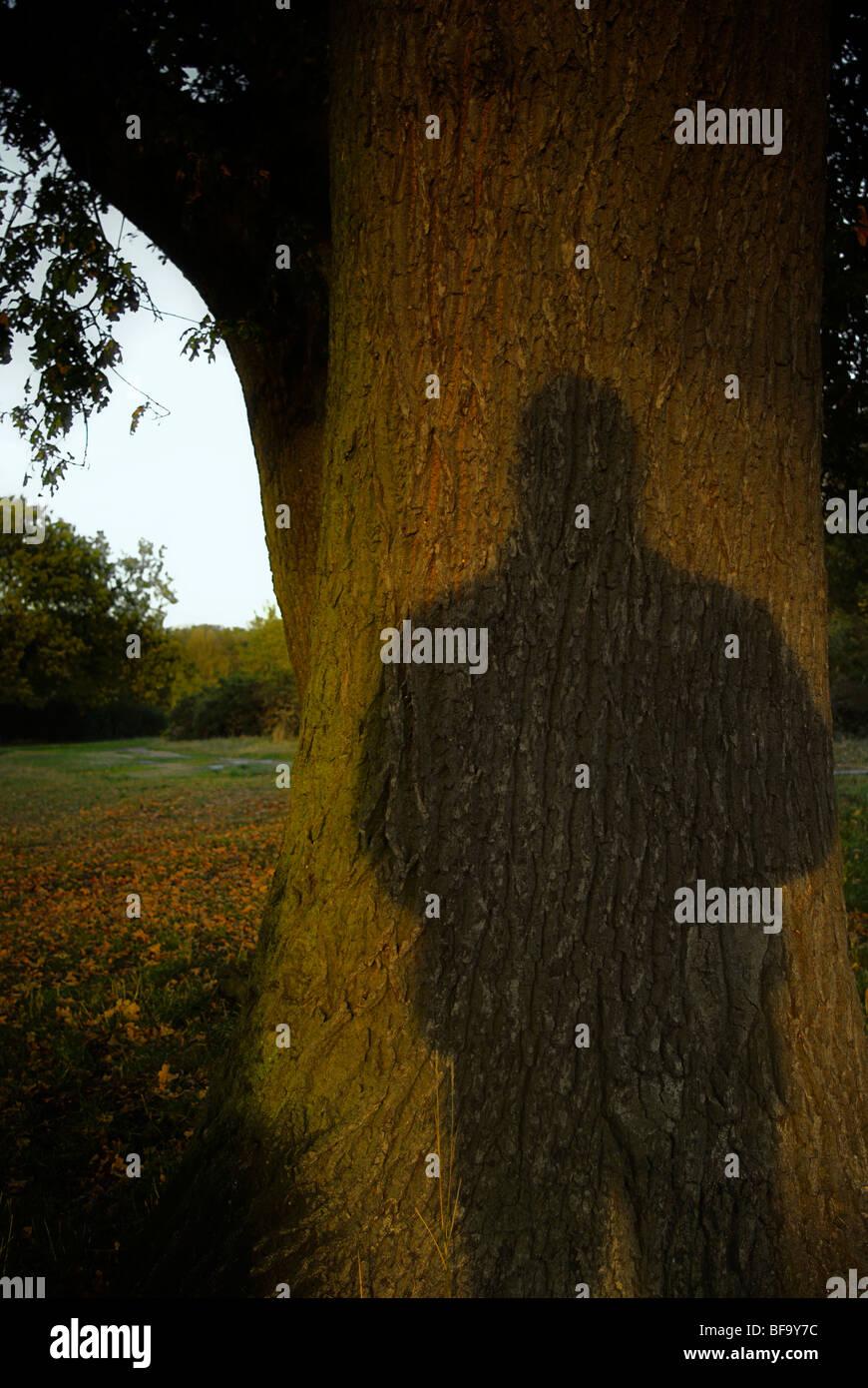 Finstere Schatten auf einem Baum Stockbild