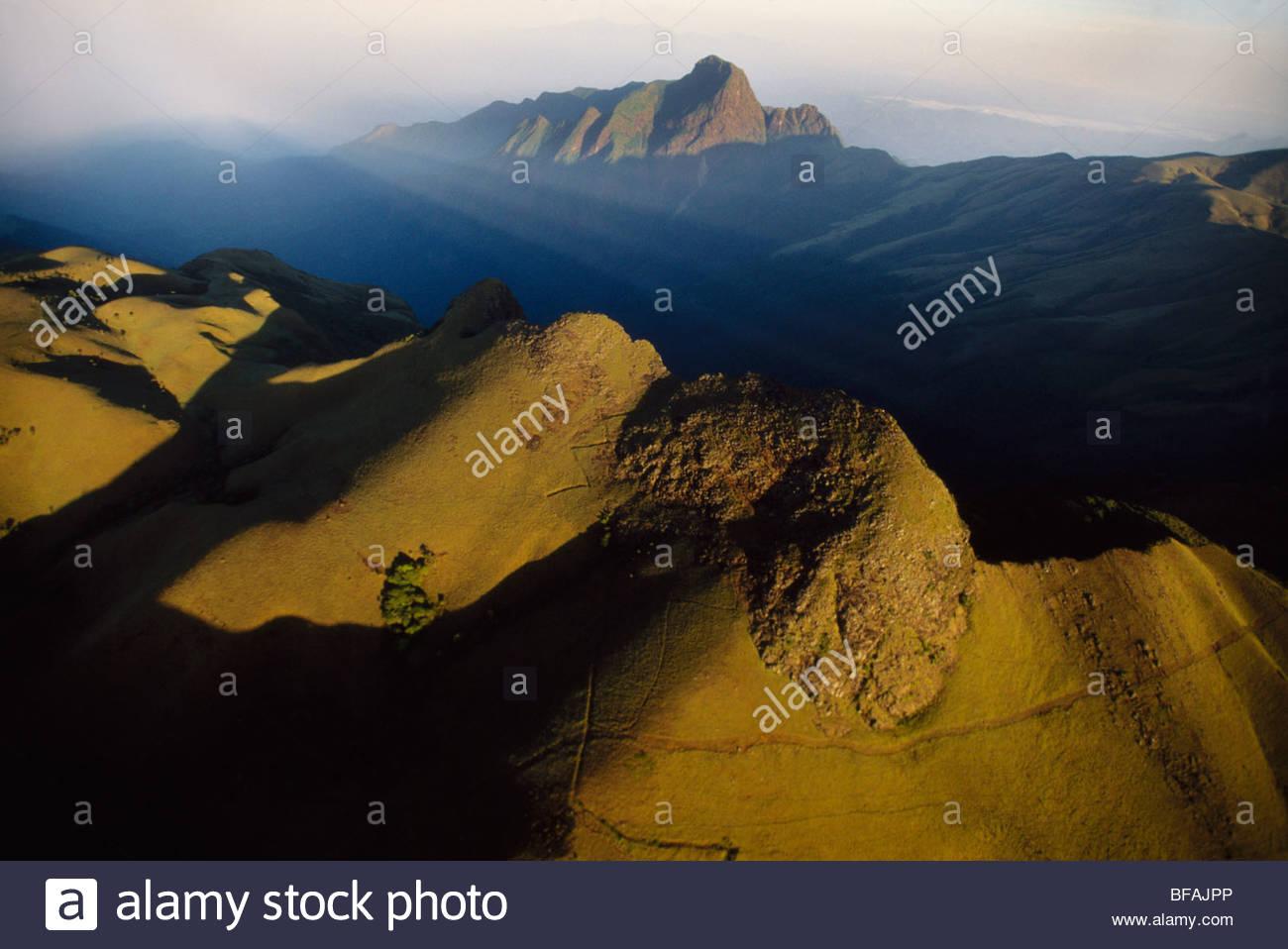 Nilgiri Hills (Antenne), Western Ghats, Indien Stockbild