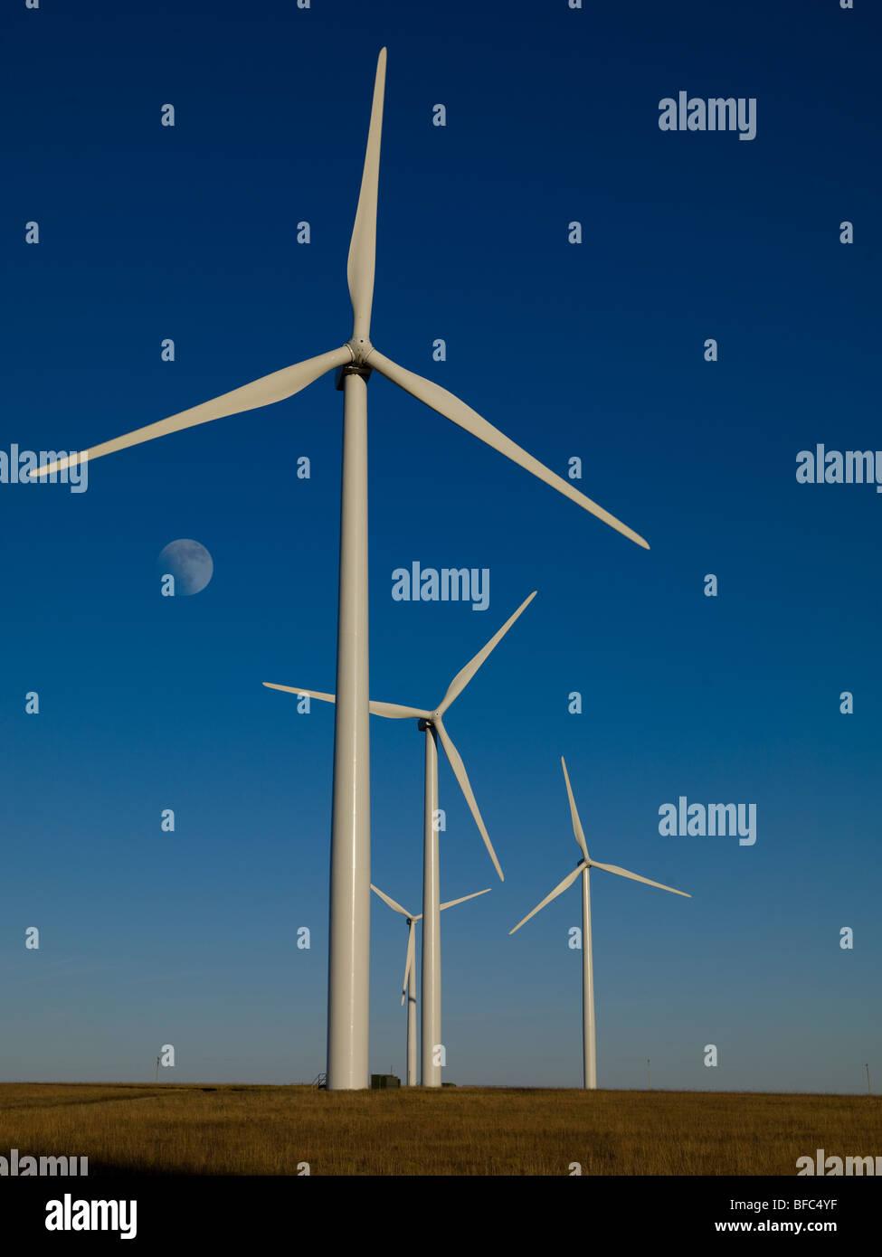 Windpark in Flint Hills in der Nähe von Beaumont, Kansas, USA, am Nachmittag in Richtung Osten mit Mondaufgang. Stockbild