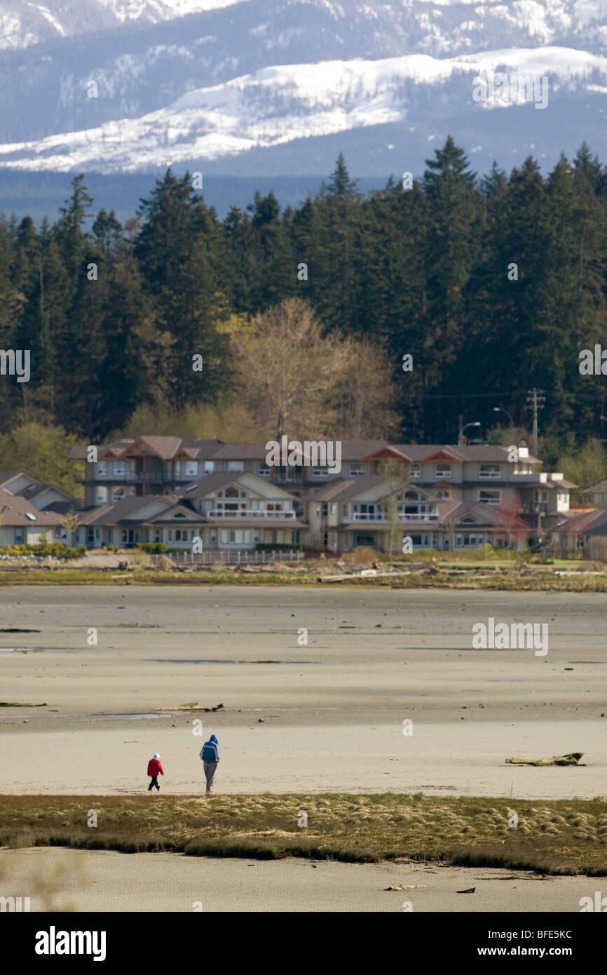 Vater und Sohn spazieren Sie am Strand bei Ebbe in Comox Bay, Courtenay, Vancouver Island, British Columbia, Kanada Stockbild
