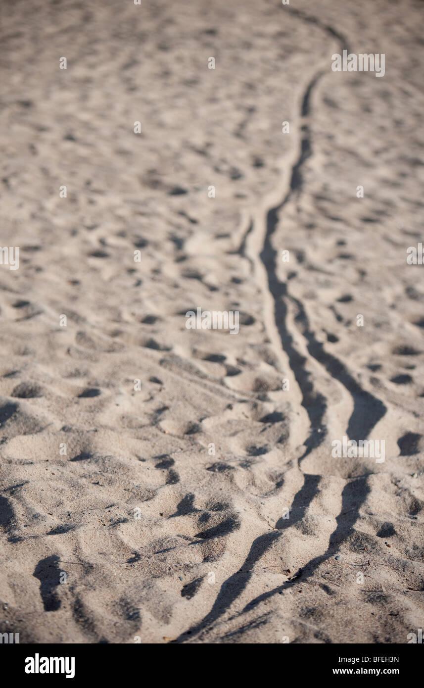 Radweg auf sand Stockbild