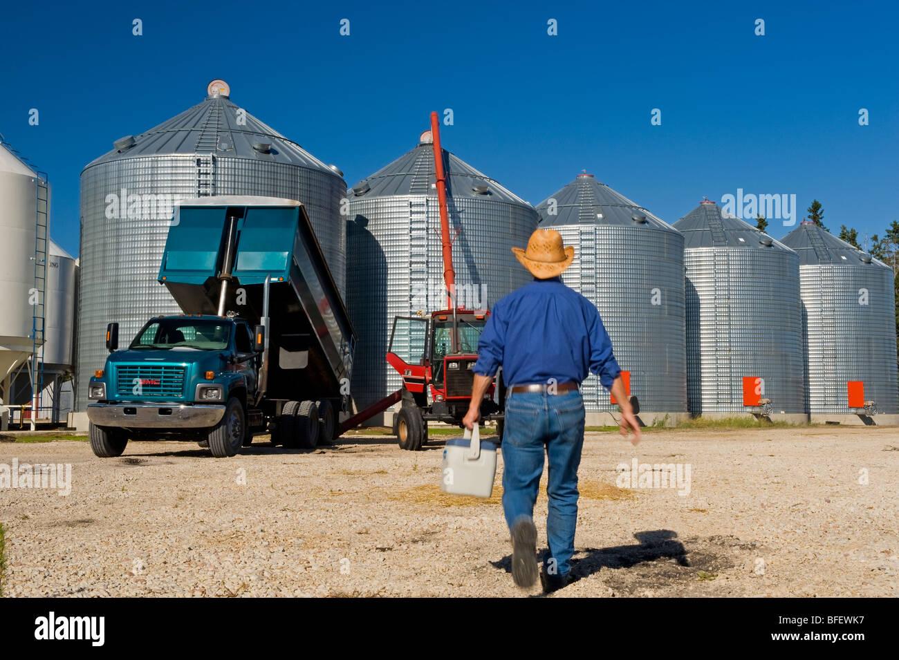 Bauer mit einem Lunchpaket geht auf seinem LKW beim Entladen Korn in Lagerplätze in der Nähe von Dugald, Stockbild