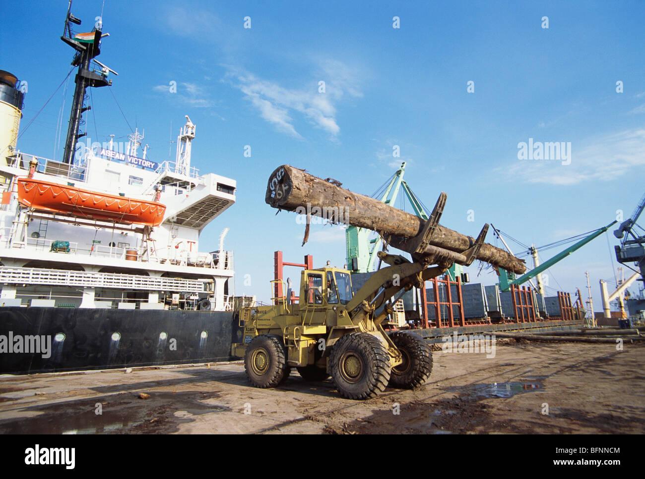 HMA 62589: Einfuhr von Holz-Holz; Kandla Port; Kutch; Gujarat; Indien Stockbild