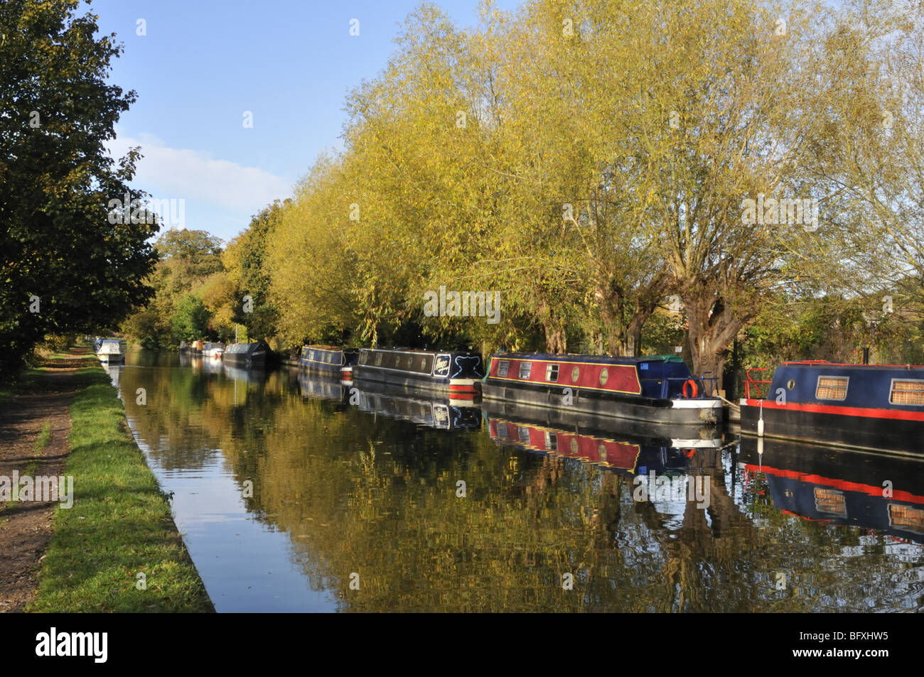 Herbstszenen am Grand Union Canal in Hertfordshire, Großbritannien. Stockbild